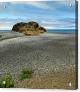 Black Sand Beach On The Lost Coast Acrylic Print