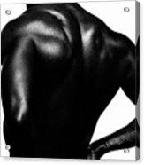 Blackback Acrylic Print