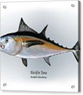 Blackfin Tuna Acrylic Print by Ralph Martens
