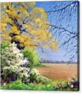 Blackthorn Winter Acrylic Print