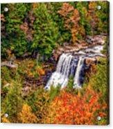 Blackwater Falls Wv Acrylic Print