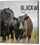 Blackwater Mug Acrylic Print