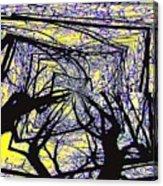 Blacky Bear Forest Acrylic Print