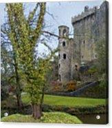 Blarney Castle 3 Acrylic Print