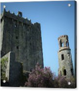 Blarney Castle And Tower County Cork Ireland Acrylic Print