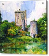 Blarney Castle Landscape Acrylic Print