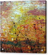 Blazing Prairie Acrylic Print