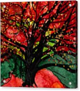 Blazing Red Orange Autumn Tree Acrylic Print