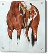 Blazing Saddles Acrylic Print
