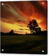 Blazing Skies Acrylic Print by Angel  Tarantella