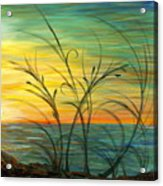 Blazing Sunrise And Grasses In Blue Acrylic Print