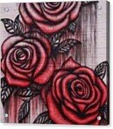 Bleeding Roses Acrylic Print