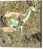 Blending In Acrylic Print