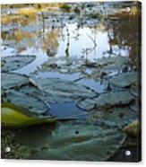 Blind River-4 Pm-september '15 Acrylic Print