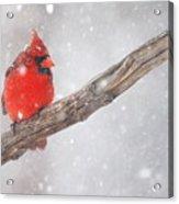 Blizzard Beacon Acrylic Print