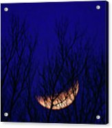 Blood Moon And Winter Trees Acrylic Print