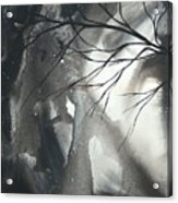 Blood Of The Moon 1 By Madart Acrylic Print