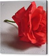 Blood Red Rose Acrylic Print