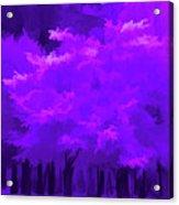Blooming Amethyst Acrylic Print
