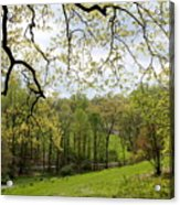 Blooming Landscape Acrylic Print