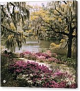 Blooming Shrubs And Trees Acrylic Print