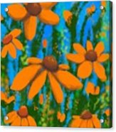 Blooms Of Orange Acrylic Print