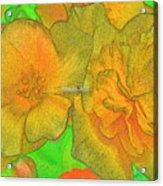 Blooms Yellow Acrylic Print