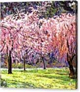 Blossom Fantasy Acrylic Print