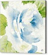 Blossom Series No.7 Acrylic Print