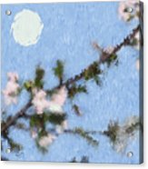 Blossoms In Moonlight Acrylic Print