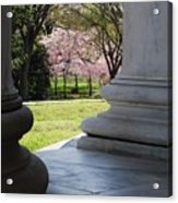 Blossoms Of The Columns Acrylic Print