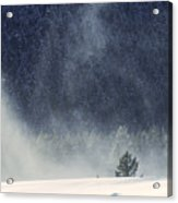Blowing Snow Acrylic Print