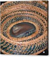 Blue Agate Basket Acrylic Print