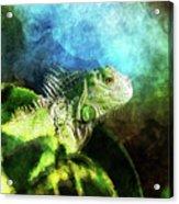 Blue And Green Iguana Profile Acrylic Print