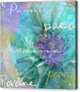 Blue And Purple Peony Acrylic Print