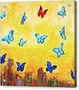 Blue And Red Butterflies Acrylic Print