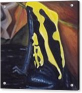 Blue And Yellow Poison Dart Frog Acrylic Print