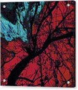 Wings Of Yoga Acrylic Print