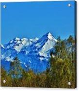 Blue Autumn Sky Acrylic Print