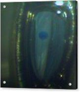Blue Balloon Acrylic Print