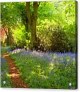 Blue Bells  Flower Acrylic Print