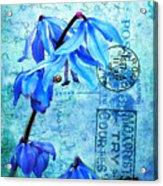 Blue Bells On Vintage 1936 Postcard Acrylic Print