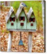 Blue Birds Castle Acrylic Print