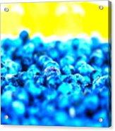 Blue Blur Acrylic Print