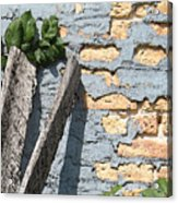 Blue Brick Acrylic Print