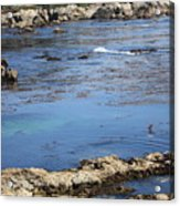 Blue California Bay Acrylic Print