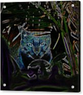 Blue Cat In The Garden Acrylic Print