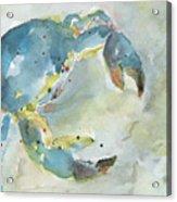 Blue Crab. Acrylic Print