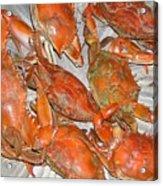 Blue Crabs Acrylic Print