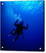 Blue Diver Acrylic Print
